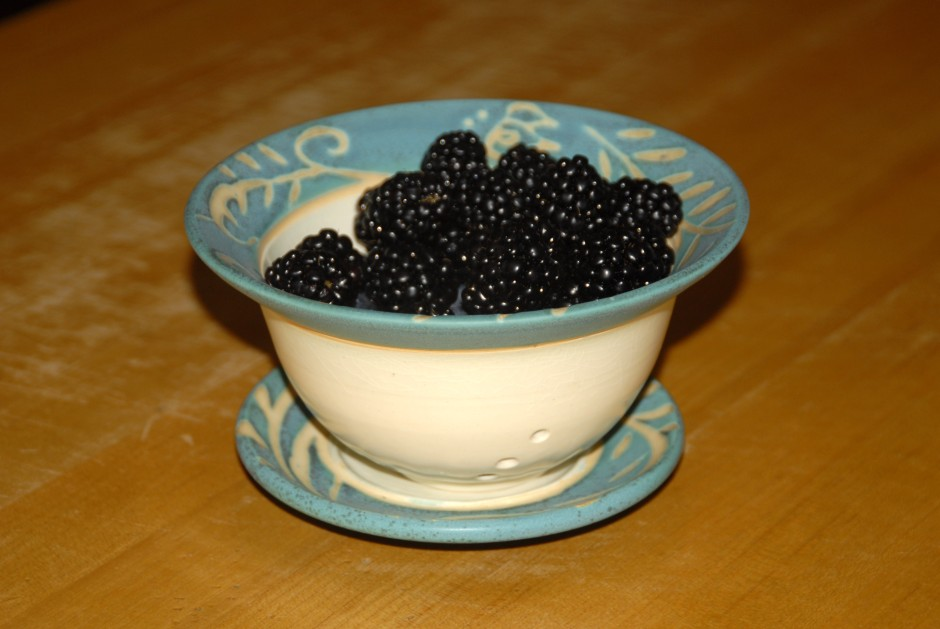 blackberries in a berry bowl